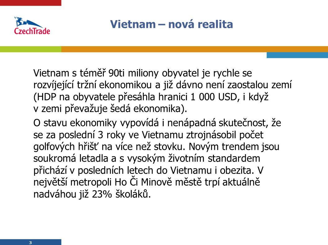 Vietnam – nová realita