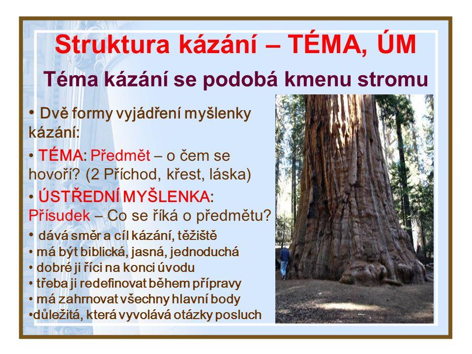 Struktura kázání – TÉMA, ÚM Téma kázání se podobá kmenu stromu