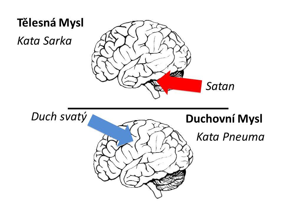 Tělesná Mysl Kata Sarka Satan Duch svatý Duchovní Mysl Kata Pneuma