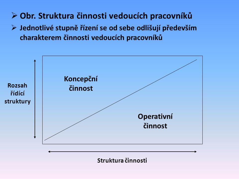 Rozsah řídící struktury