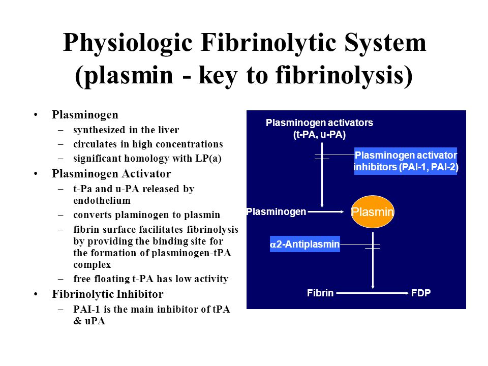 Physiologic Fibrinolytic System (plasmin - key to fibrinolysis)