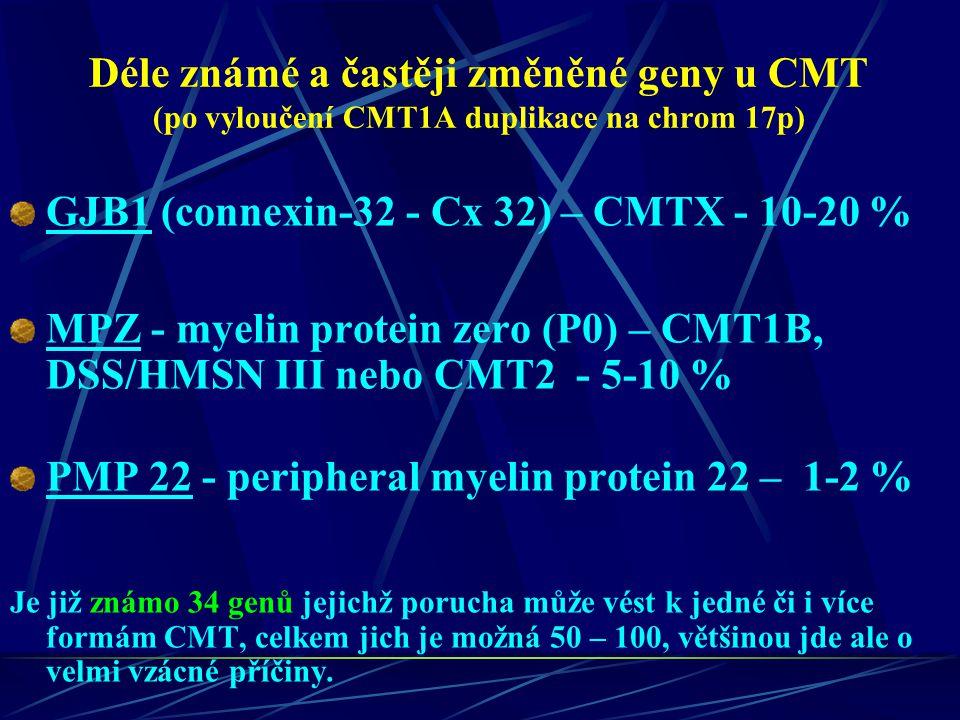 GJB1 (connexin-32 - Cx 32) – CMTX - 10-20 %