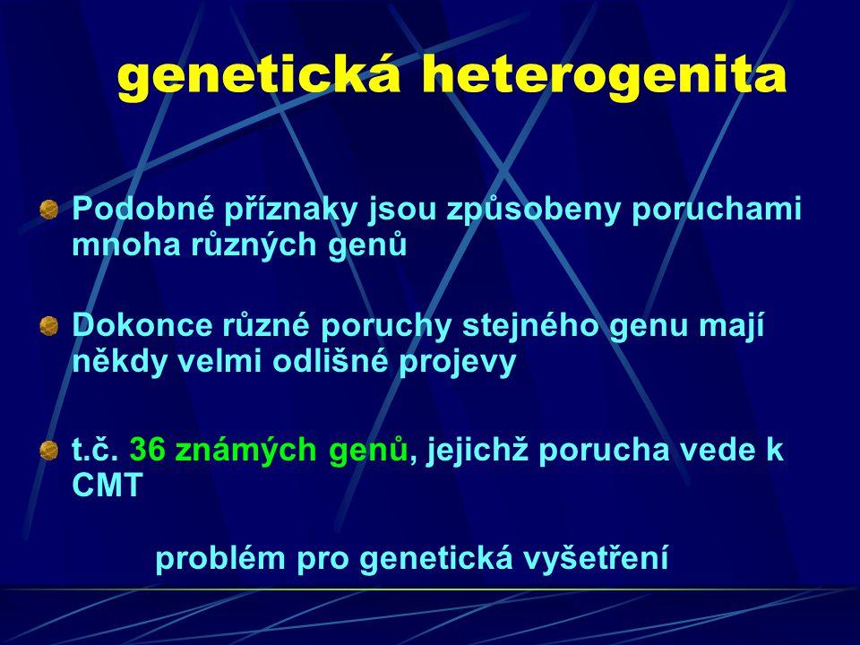 genetická heterogenita