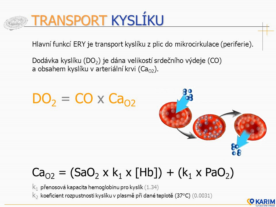 TRANSPORT KYSLÍKU DO2 = CO x CaO2