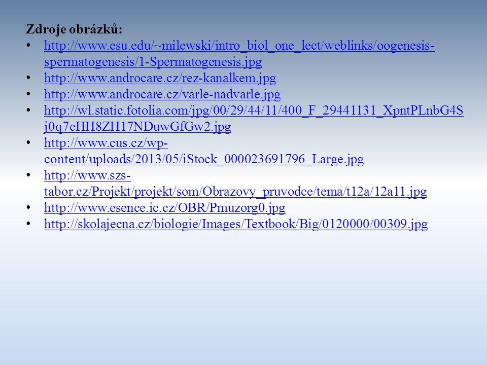 Zdroje obrázků: http://www.esu.edu/~milewski/intro_biol_one_lect/weblinks/oogenesis-spermatogenesis/1-Spermatogenesis.jpg.
