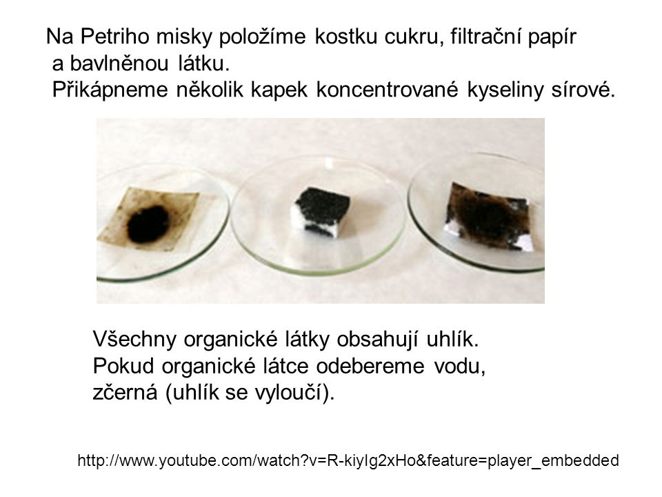 Na Petriho misky položíme kostku cukru, filtrační papír