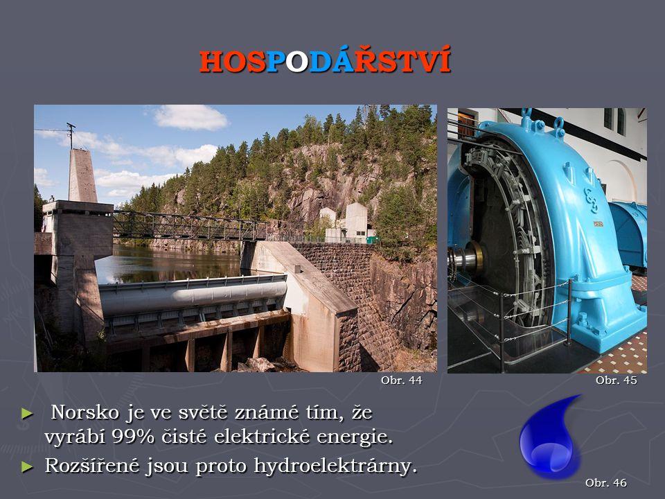 HOSPODÁŘSTVÍ Obr. 44. Obr. 45. Norsko je ve světě známé tím, že vyrábí 99% čisté elektrické energie.