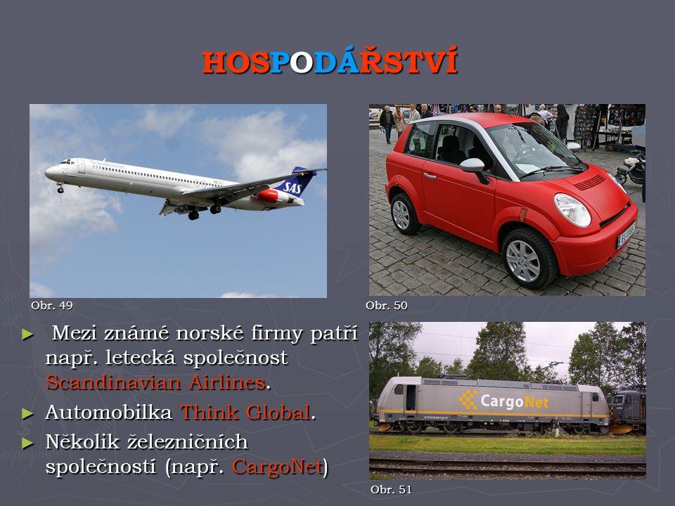 HOSPODÁŘSTVÍ Obr. 49. Obr. 50. Mezi známé norské firmy patří např. letecká společnost Scandinavian Airlines.