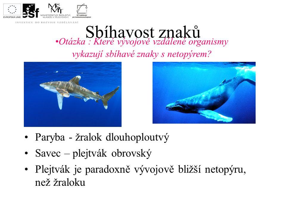 Sbíhavost znaků Paryba - žralok dlouhoploutvý