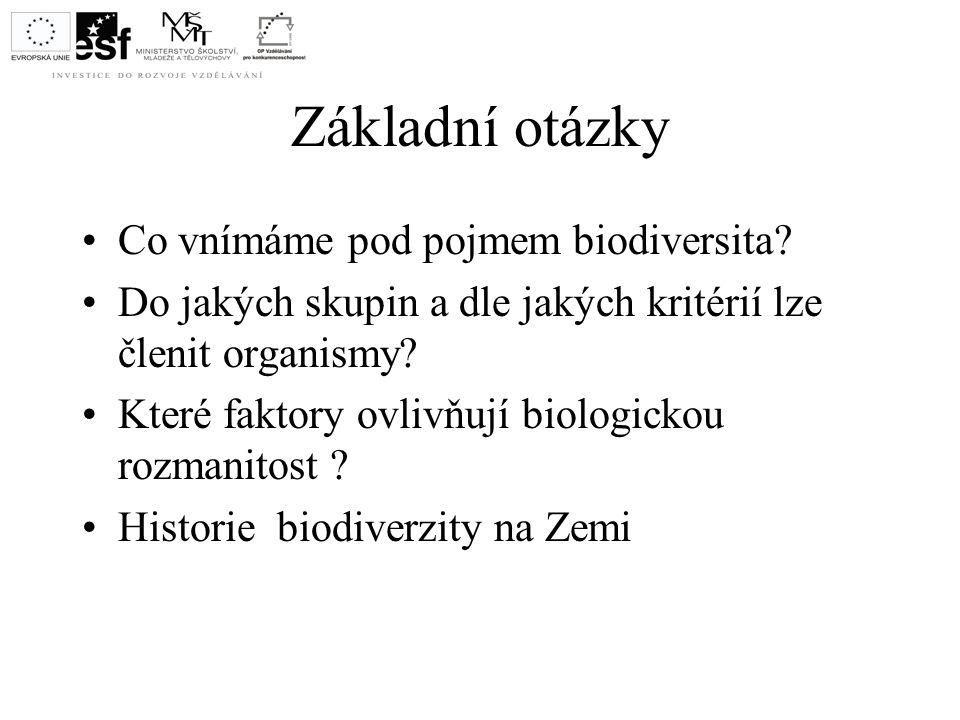 Základní otázky Co vnímáme pod pojmem biodiversita