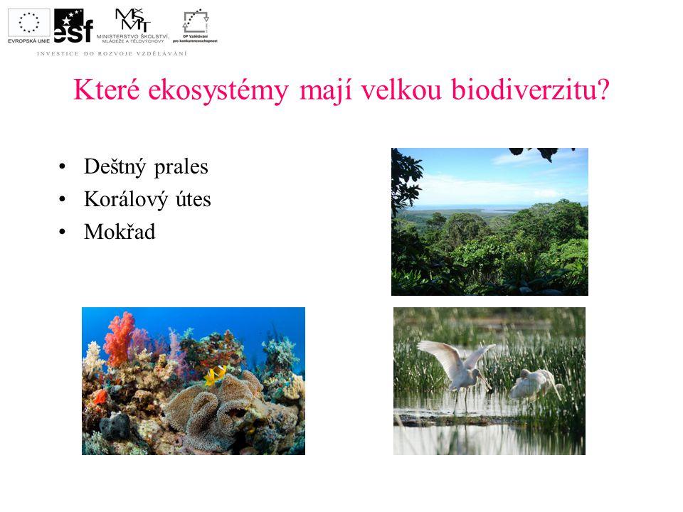 Které ekosystémy mají velkou biodiverzitu