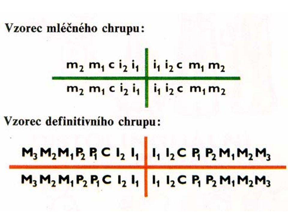 Vzorce chrupu
