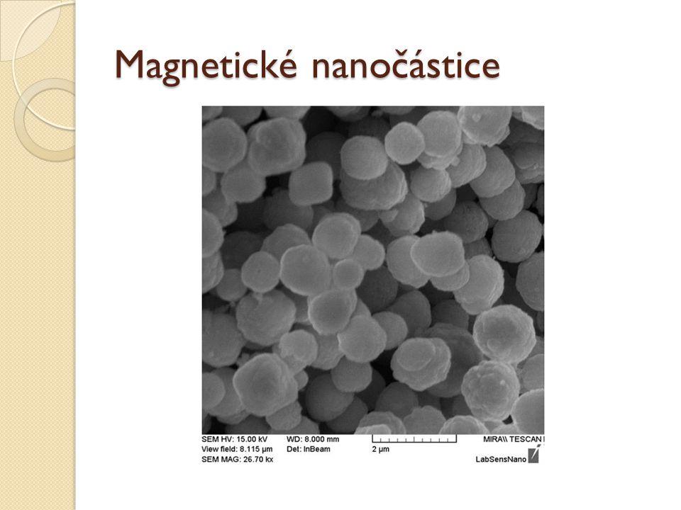 Magnetické nanočástice