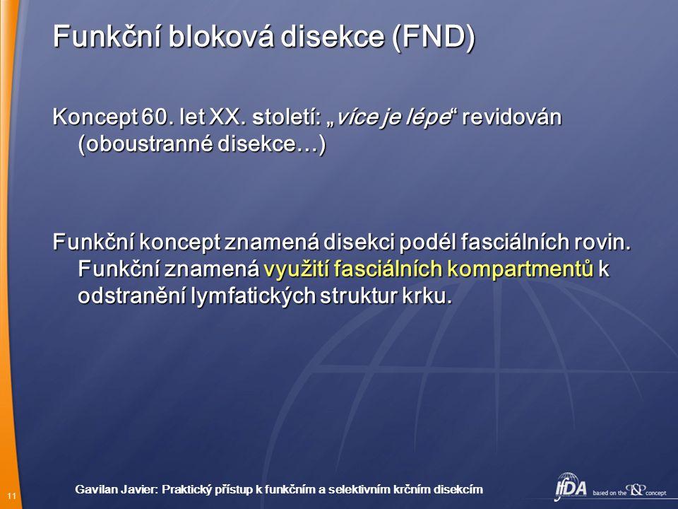 Funkční bloková disekce (FND)
