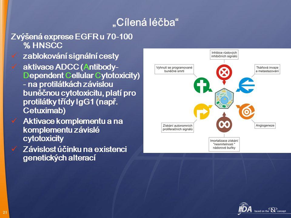 """""""Cílená léčba Zvýšená exprese EGFR u 70-100 % HNSCC"""