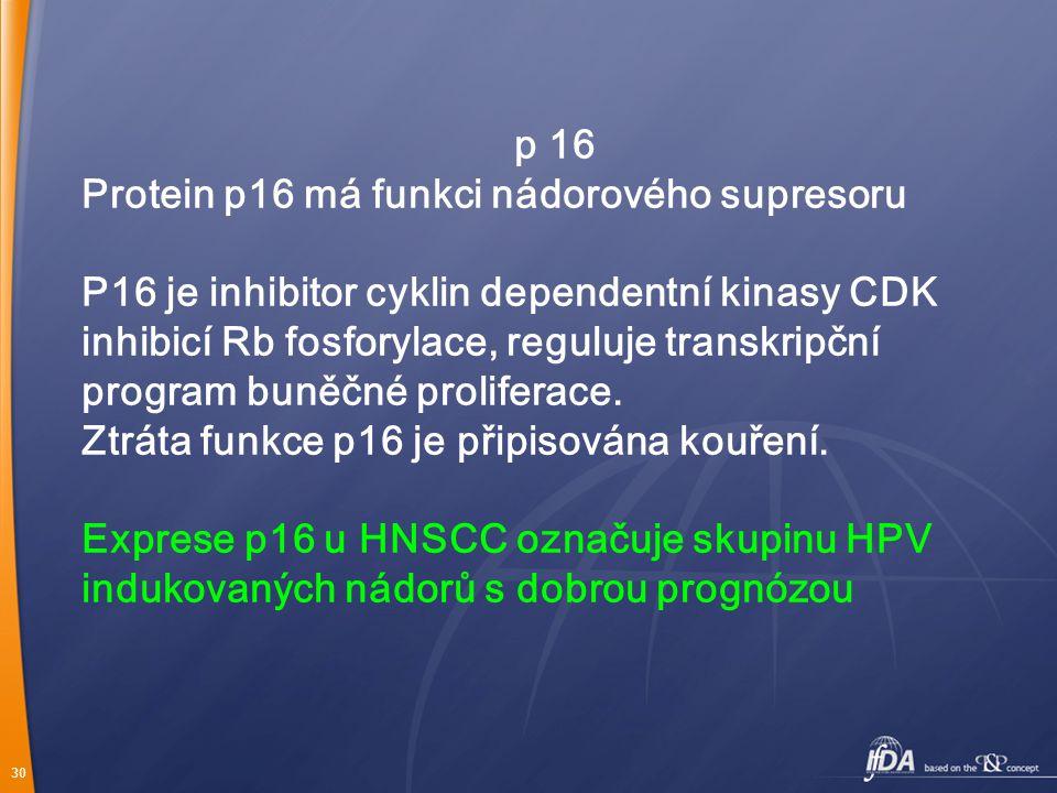 p 16 Protein p16 má funkci nádorového supresoru.