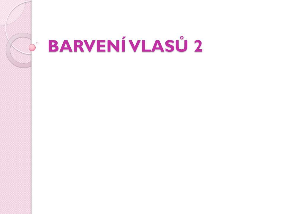BARVENÍ VLASŮ 2