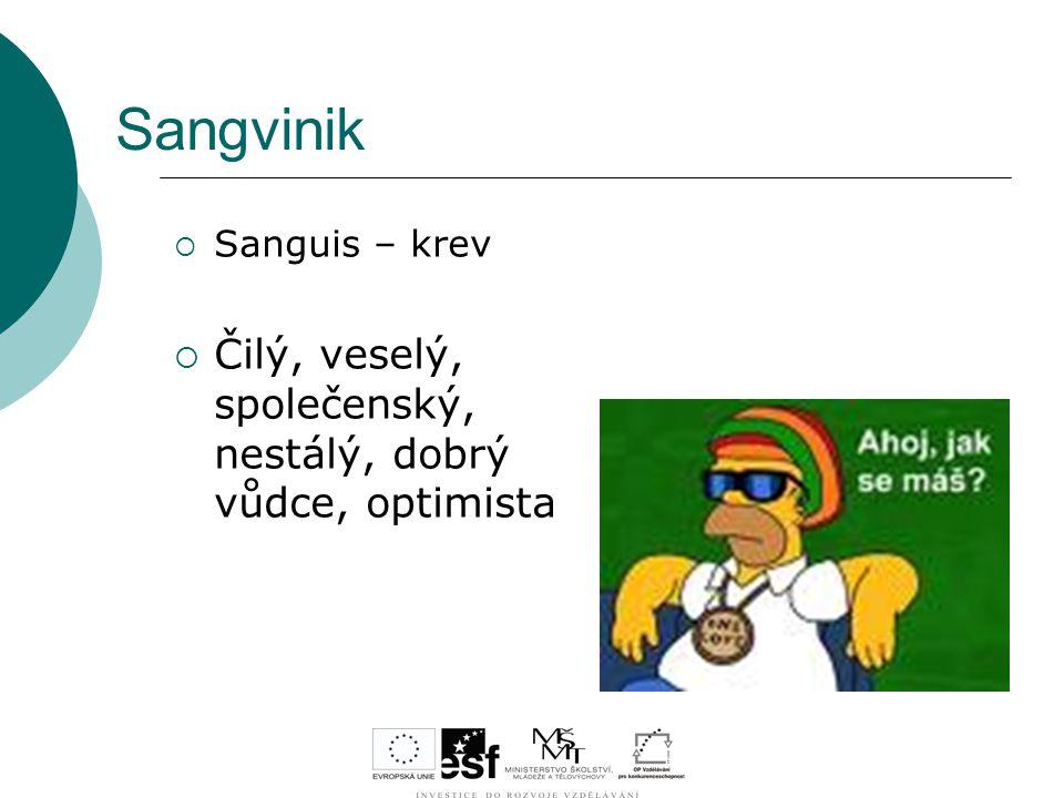 Sangvinik Čilý, veselý, společenský, nestálý, dobrý vůdce, optimista