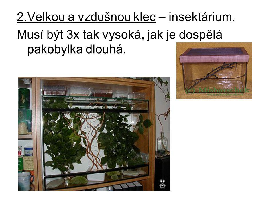 2.Velkou a vzdušnou klec – insektárium.