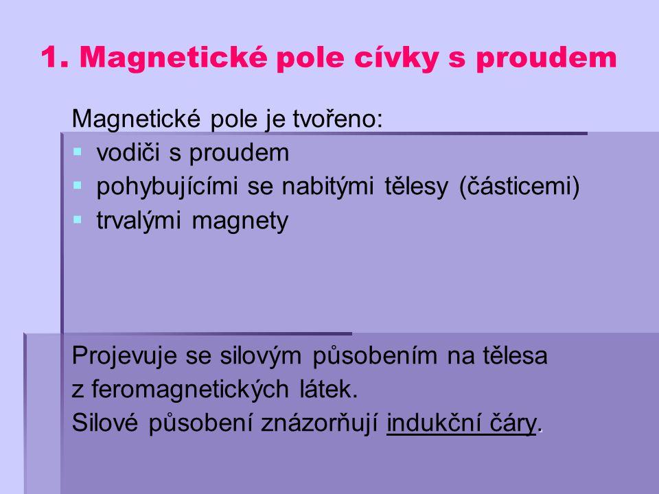 1. Magnetické pole cívky s proudem