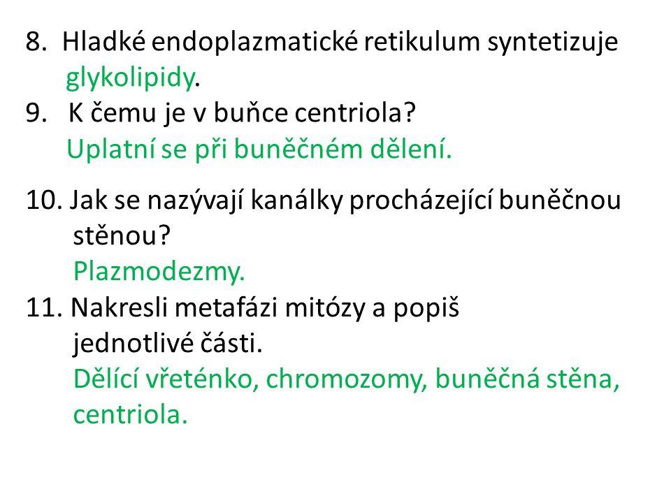 8. Hladké endoplazmatické retikulum syntetizuje