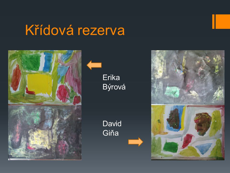 Křídová rezerva Erika Býrová David Giňa
