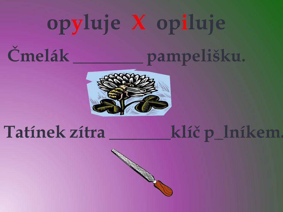 opyluje X opiluje opyluje Čmelák ________ pampelišku. i