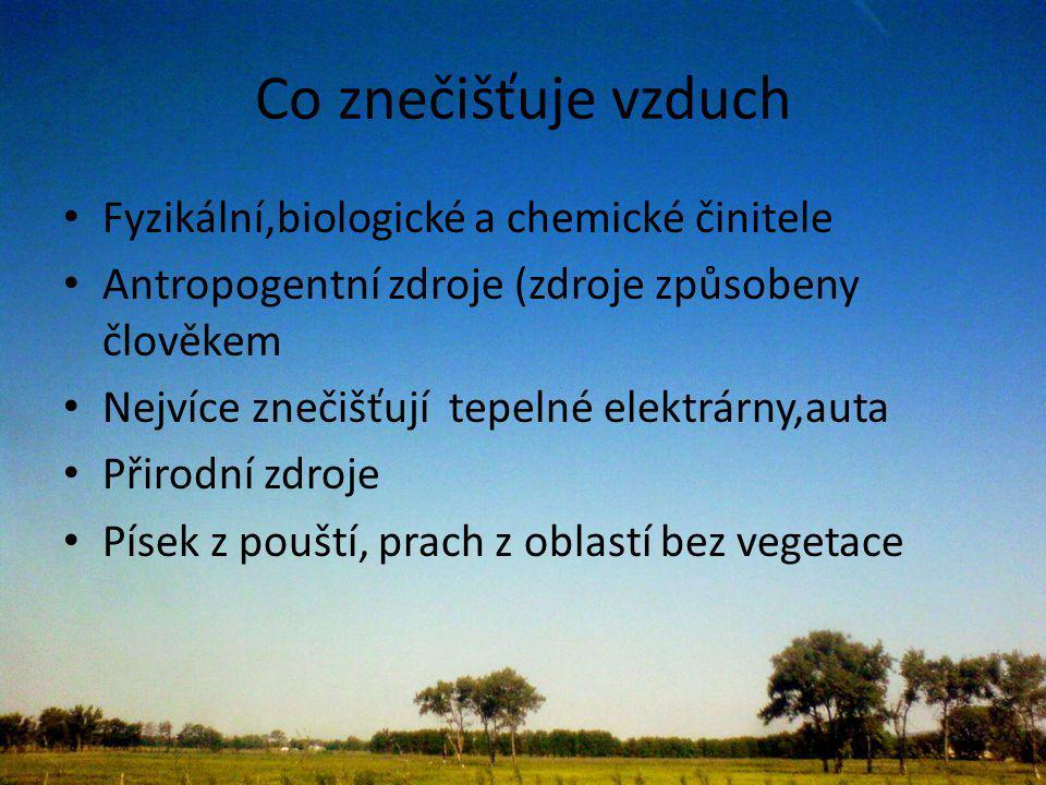 Co znečišťuje vzduch Fyzikální,biologické a chemické činitele