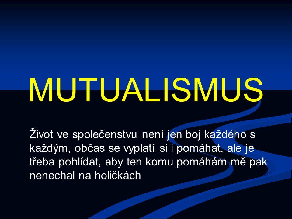 MUTUALISMUS