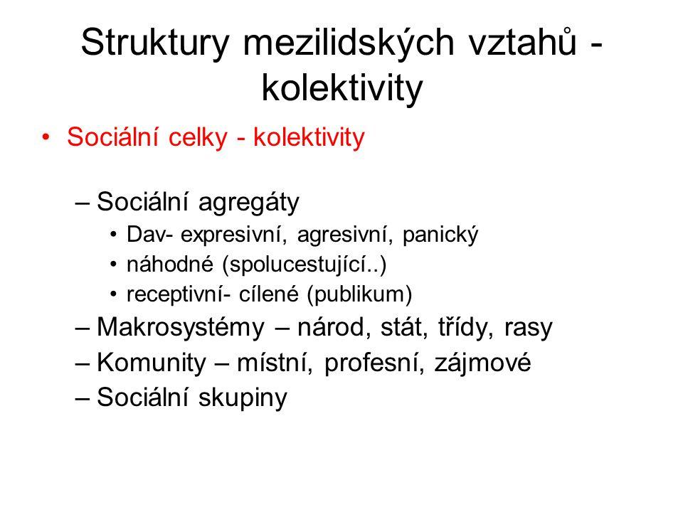 Struktury mezilidských vztahů - kolektivity