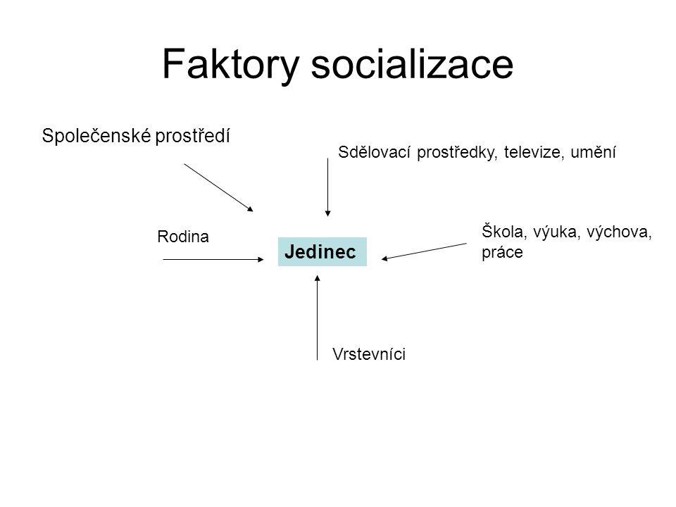 Faktory socializace Společenské prostředí Jedinec