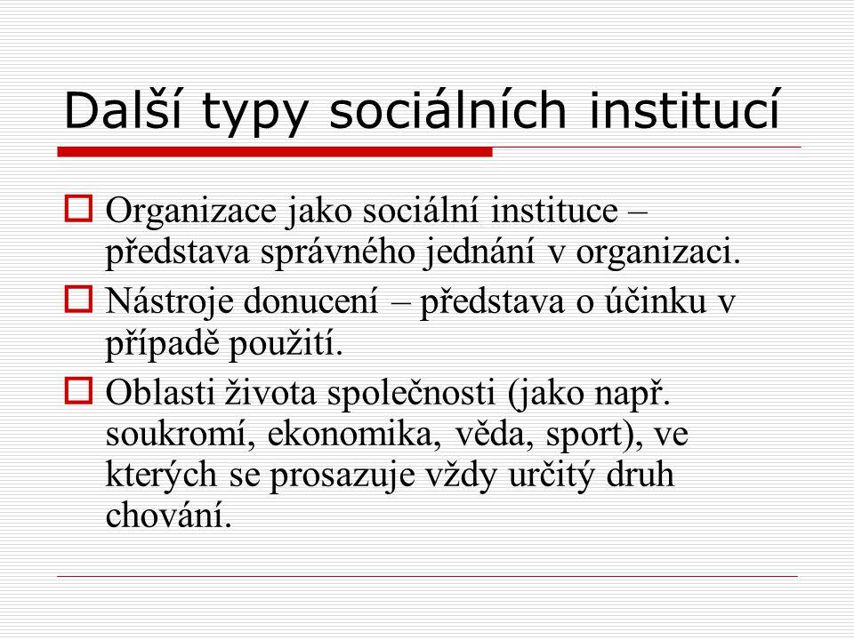 Další typy sociálních institucí