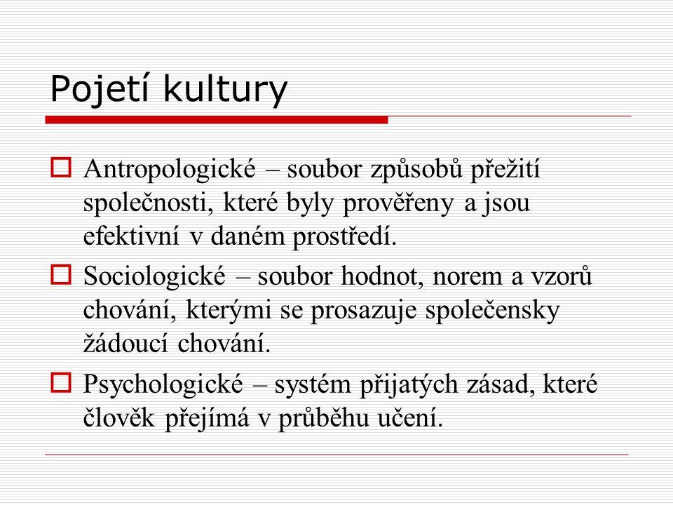 Pojetí kultury Antropologické – soubor způsobů přežití společnosti, které byly prověřeny a jsou efektivní v daném prostředí.