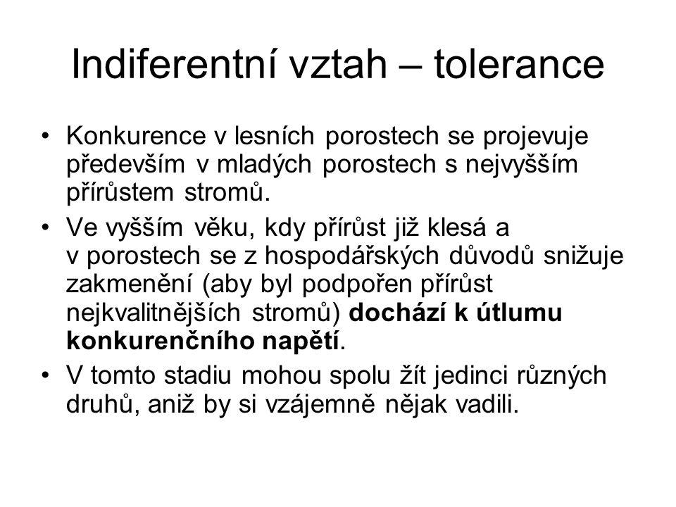 Indiferentní vztah – tolerance