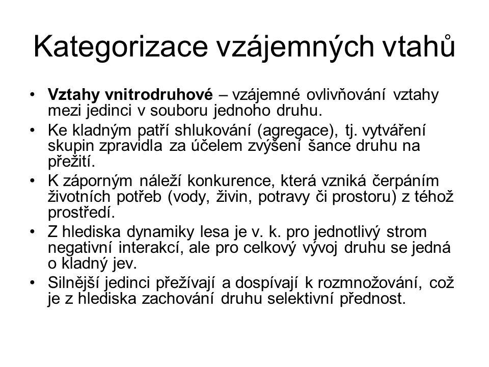 Kategorizace vzájemných vtahů