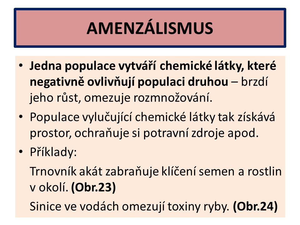 AMENZÁLISMUS Jedna populace vytváří chemické látky, které negativně ovlivňují populaci druhou – brzdí jeho růst, omezuje rozmnožování.