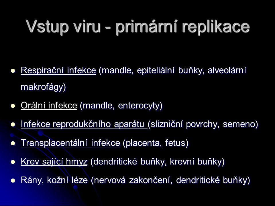 Vstup viru - primární replikace