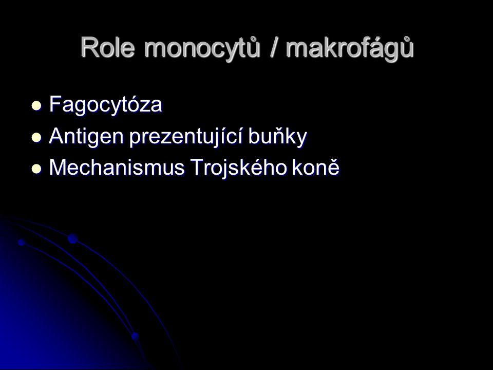 Role monocytů / makrofágů
