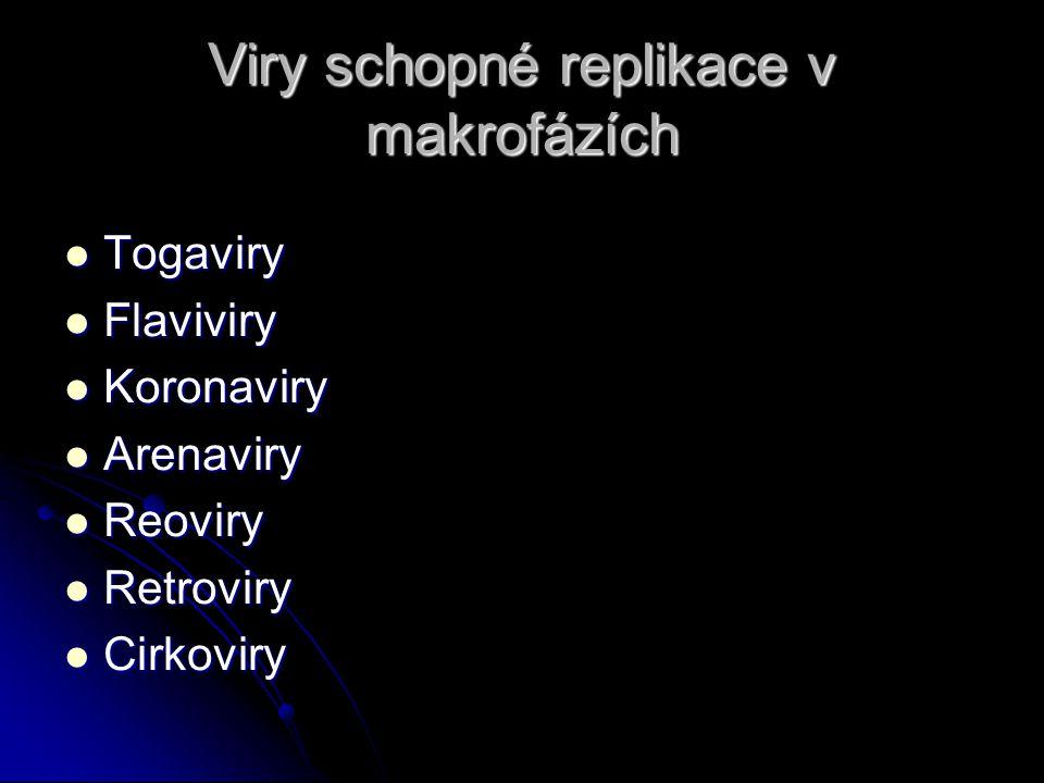 Viry schopné replikace v makrofázích