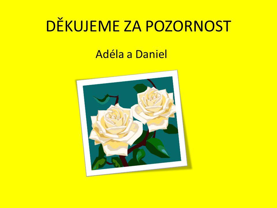 DĚKUJEME ZA POZORNOST Adéla a Daniel
