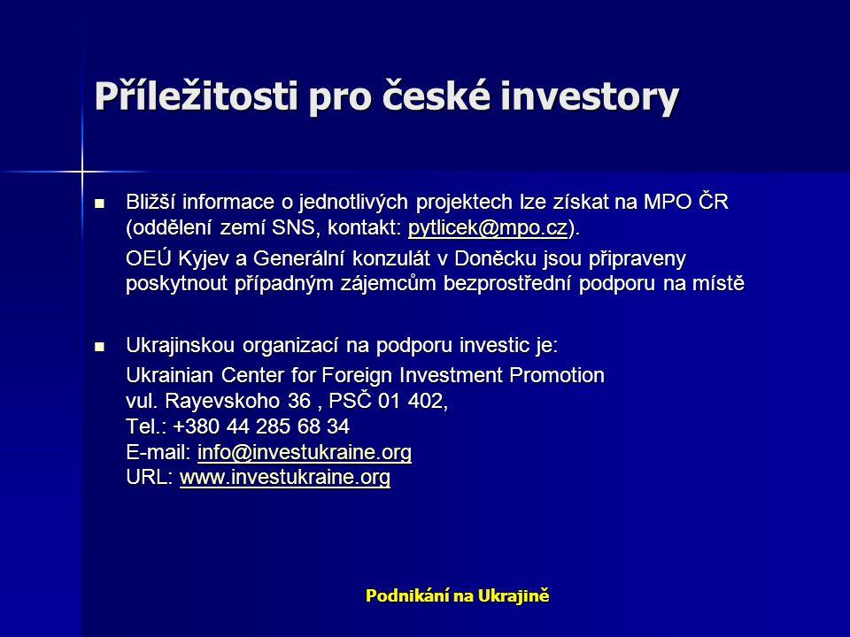 Příležitosti pro české investory