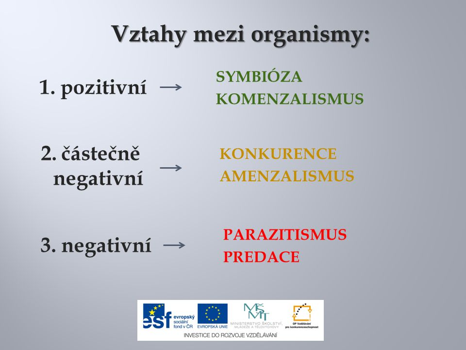 Vztahy mezi organismy: