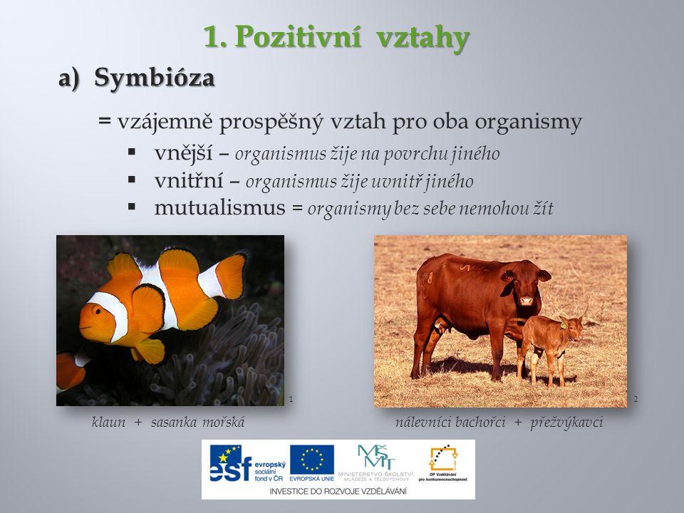 1. Pozitivní vztahy a) Symbióza