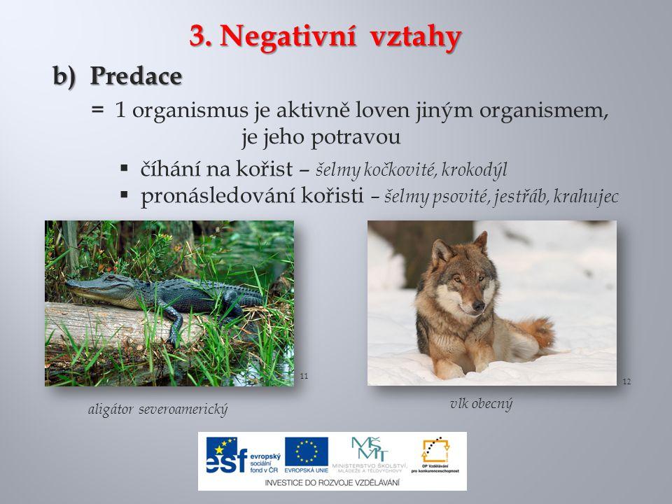 3. Negativní vztahy b) Predace