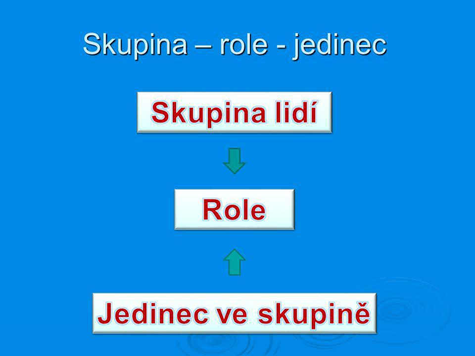 Skupina – role - jedinec