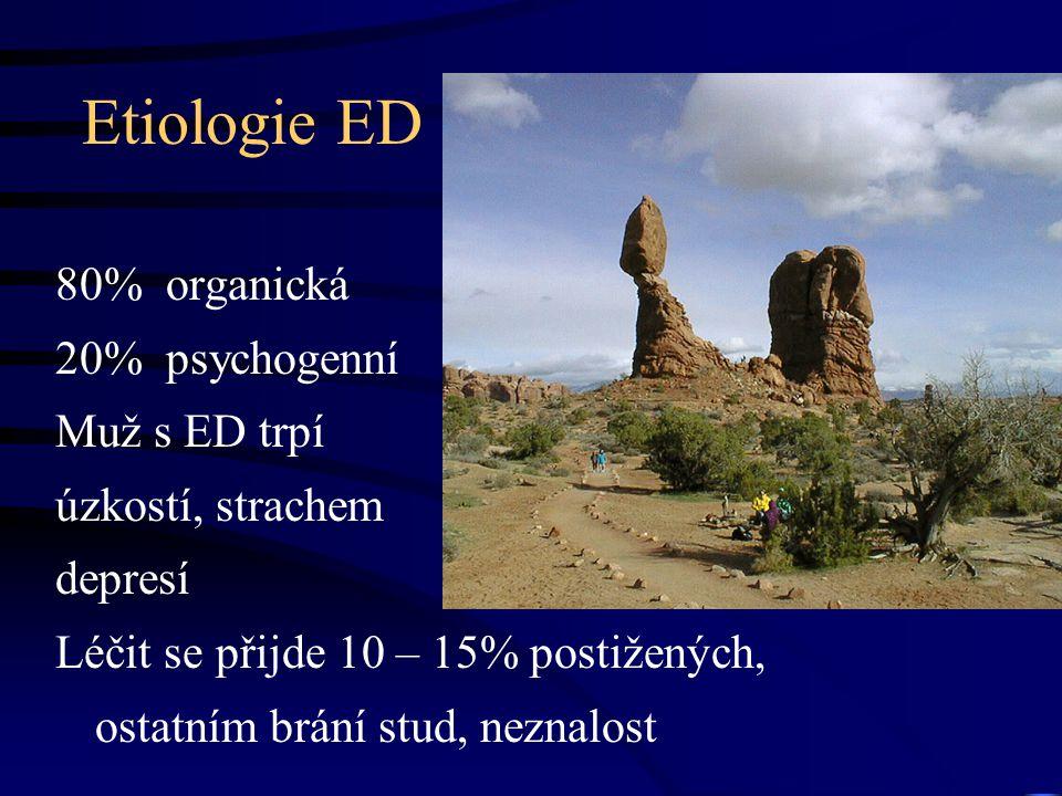 Etiologie ED 80% organická 20% psychogenní Muž s ED trpí