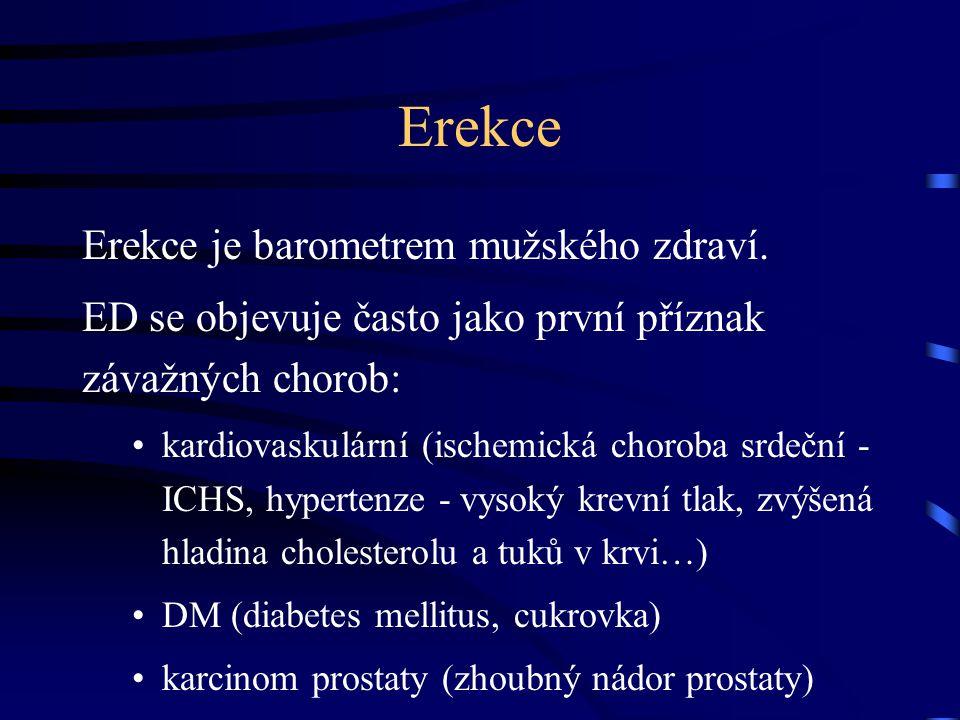 Erekce Erekce je barometrem mužského zdraví.