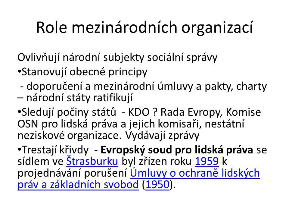 Role mezinárodních organizací