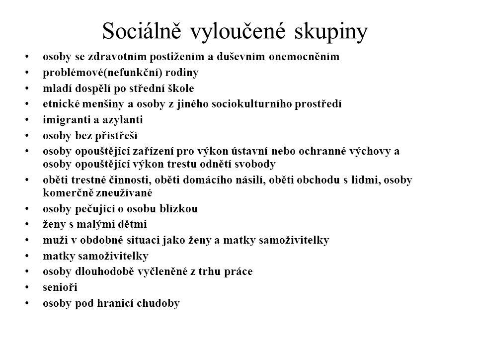 Sociálně vyloučené skupiny
