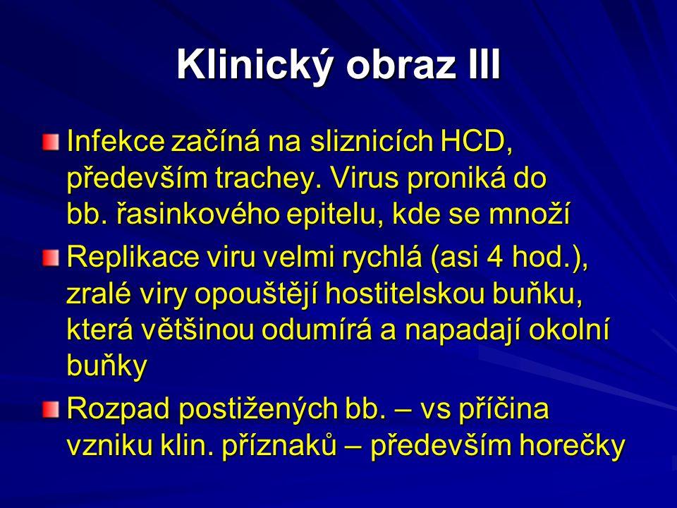 Klinický obraz III Infekce začíná na sliznicích HCD, především trachey. Virus proniká do bb. řasinkového epitelu, kde se množí.